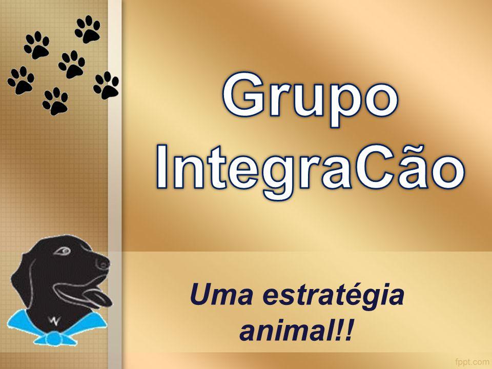Grupo IntegraCão Uma estratégia animal!!