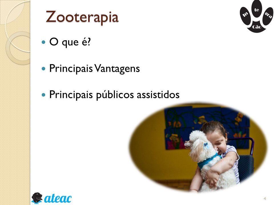 Zooterapia O que é Principais Vantagens