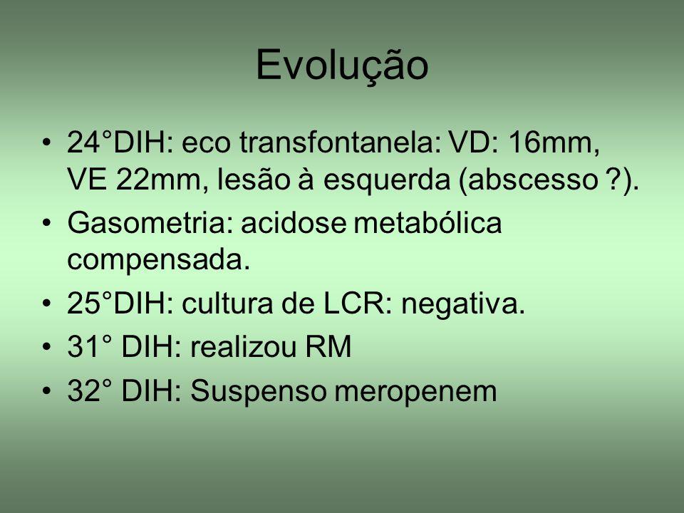 Evolução 24°DIH: eco transfontanela: VD: 16mm, VE 22mm, lesão à esquerda (abscesso ). Gasometria: acidose metabólica compensada.