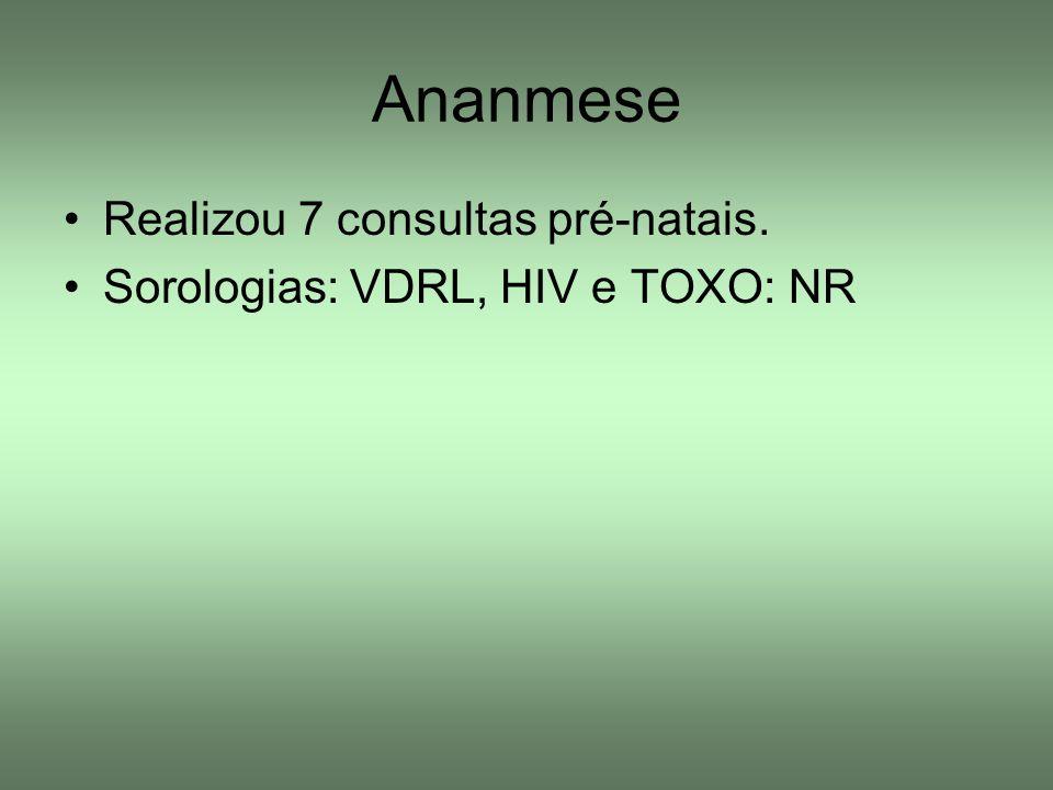 Ananmese Realizou 7 consultas pré-natais.