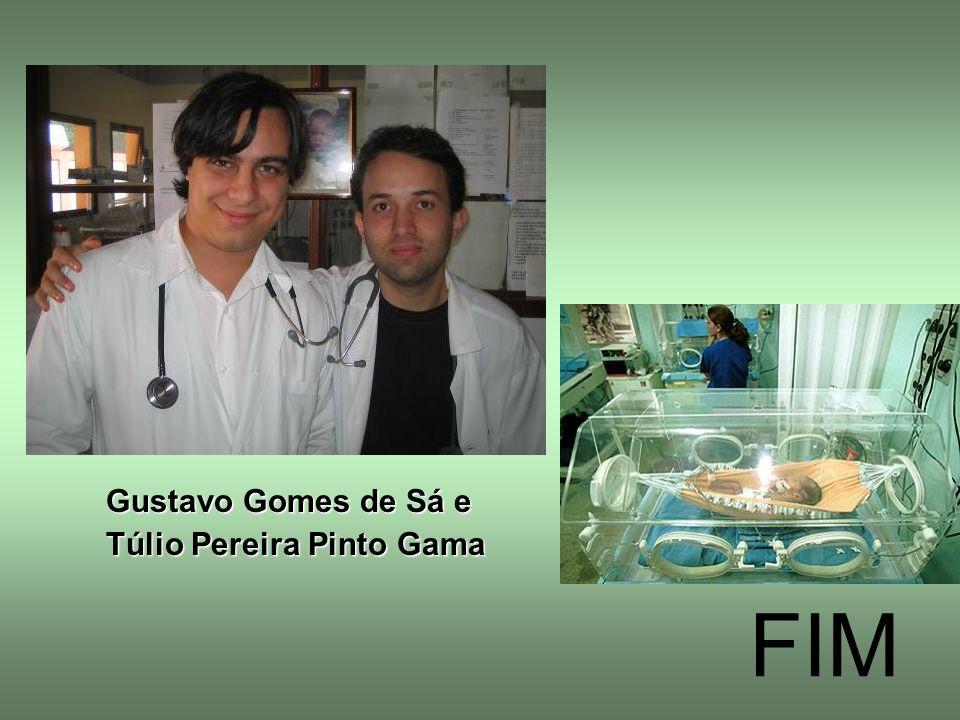 Gustavo Gomes de Sá e Túlio Pereira Pinto Gama FIM