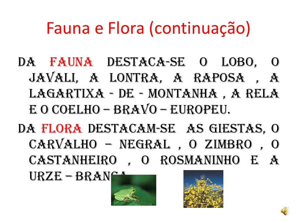 Fauna e Flora (continuação)