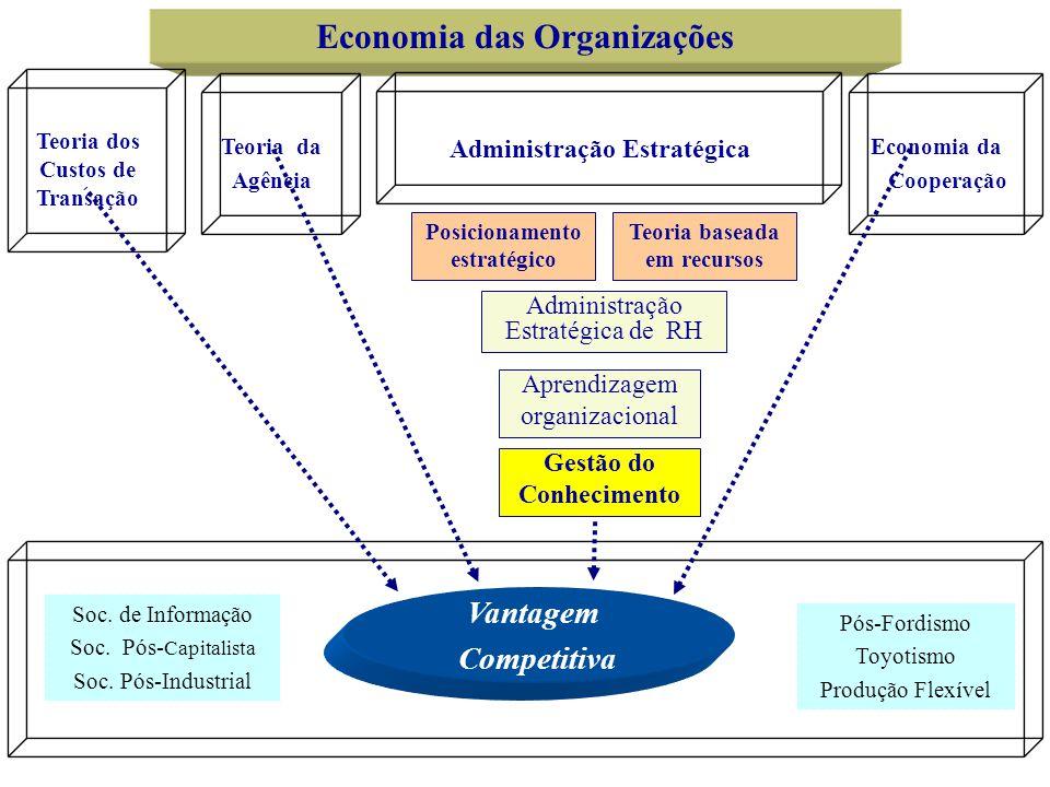 Economia das Organizações