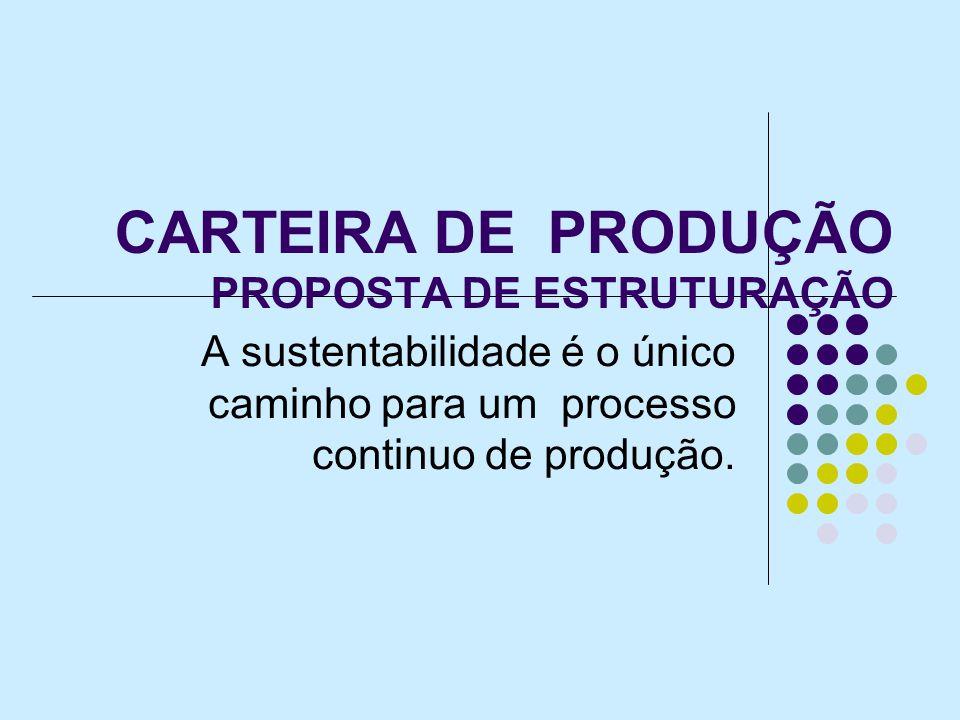 CARTEIRA DE PRODUÇÃO PROPOSTA DE ESTRUTURAÇÃO