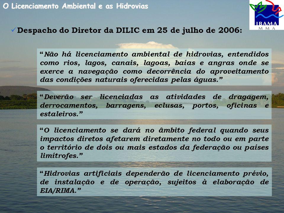 Despacho do Diretor da DILIC em 25 de julho de 2006: