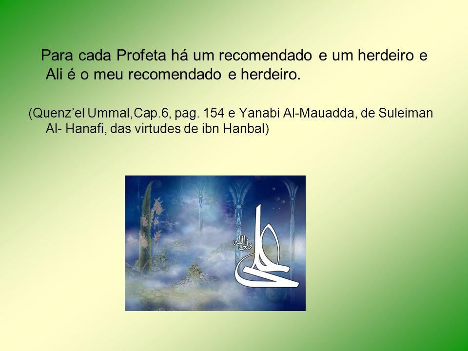 Para cada Profeta há um recomendado e um herdeiro e Ali é o meu recomendado e herdeiro.