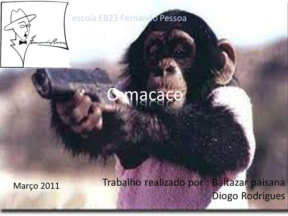 O macaco Trabalho realizado por : Baltazar paisana Diogo Rodrigues