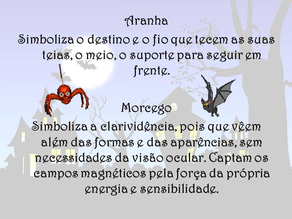Aranha Simboliza o destino e o fio que tecem as suas teias, o meio, o suporte para seguir em frente.