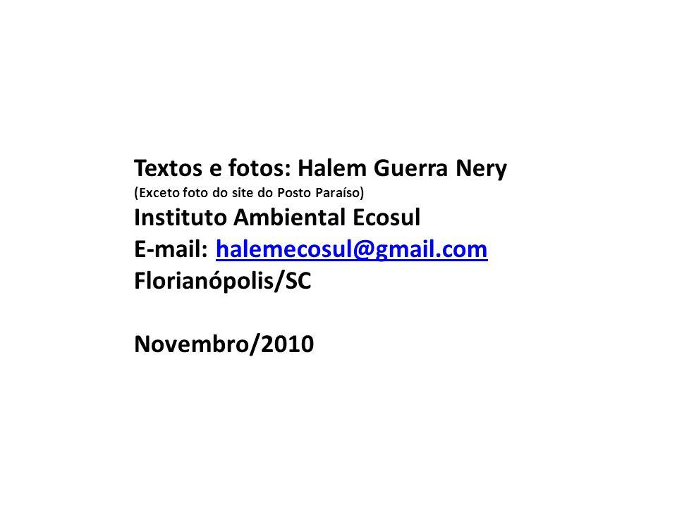 Textos e fotos: Halem Guerra Nery Instituto Ambiental Ecosul