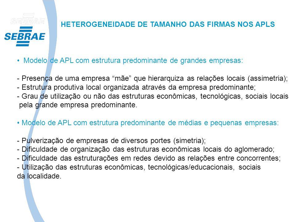 HETEROGENEIDADE DE TAMANHO DAS FIRMAS NOS APLS