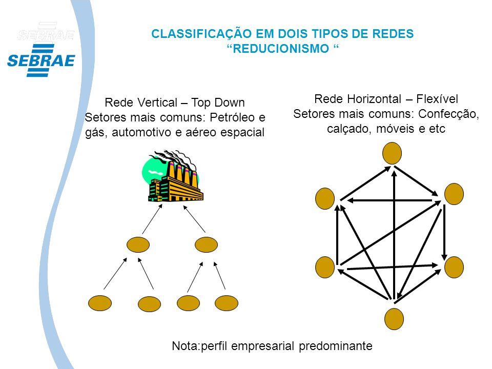 CLASSIFICAÇÃO EM DOIS TIPOS DE REDES REDUCIONISMO