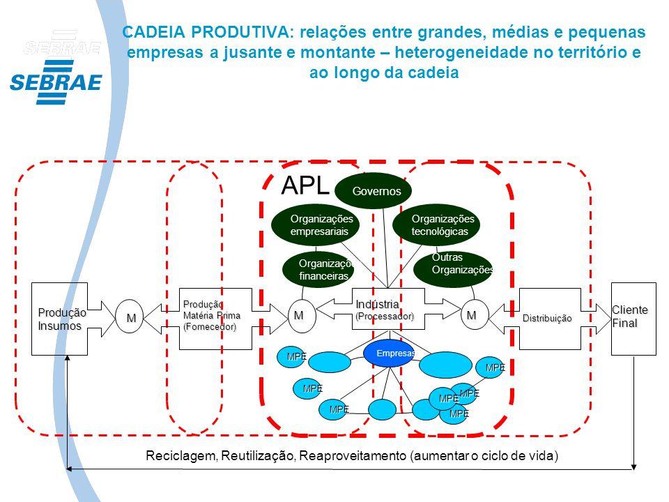 CADEIA PRODUTIVA: relações entre grandes, médias e pequenas empresas a jusante e montante – heterogeneidade no território e ao longo da cadeia