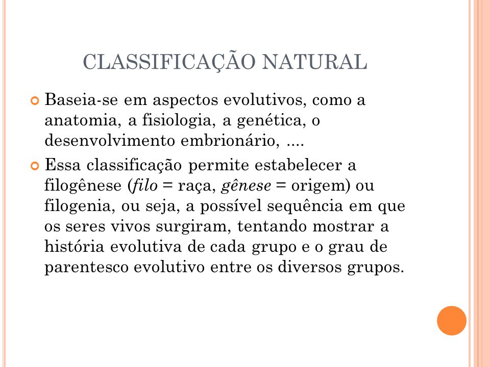 CLASSIFICAÇÃO NATURAL