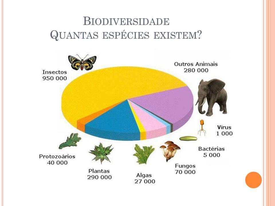 Biodiversidade Quantas espécies existem