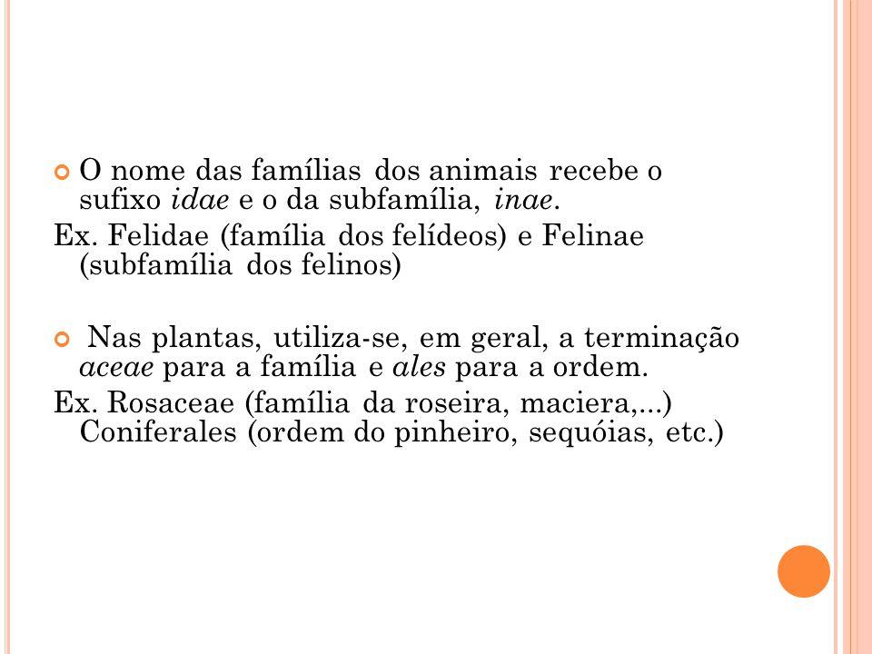 O nome das famílias dos animais recebe o sufixo idae e o da subfamília, inae.