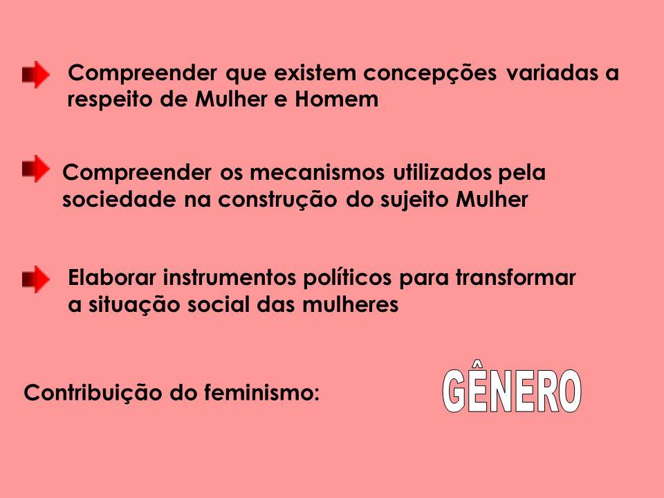 Contribuição do feminismo: