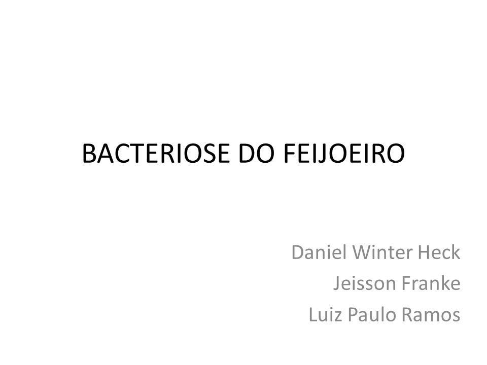 BACTERIOSE DO FEIJOEIRO