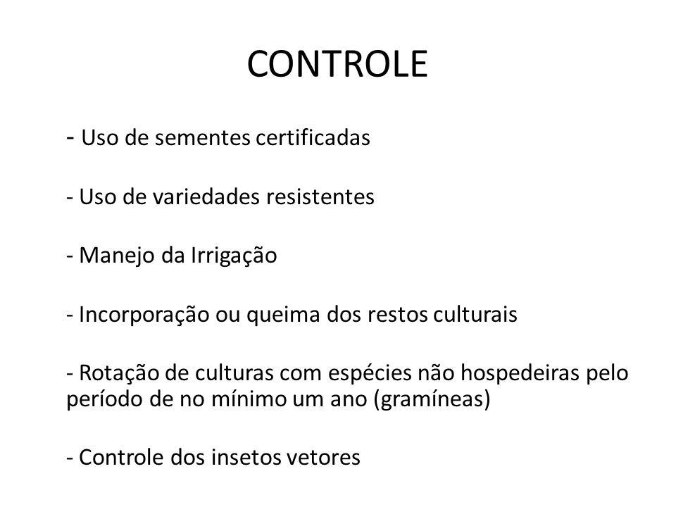 CONTROLE - Uso de sementes certificadas