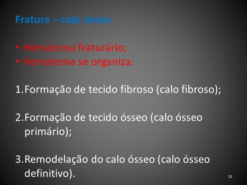 Fratura – calo ósseo Hematoma fraturário; Hematoma se organiza: Formação de tecido fibroso (calo fibroso);