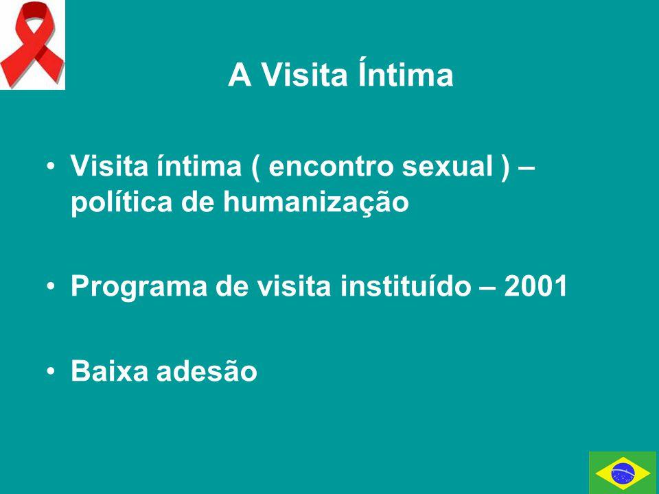 A Visita Íntima Visita íntima ( encontro sexual ) – política de humanização. Programa de visita instituído – 2001.