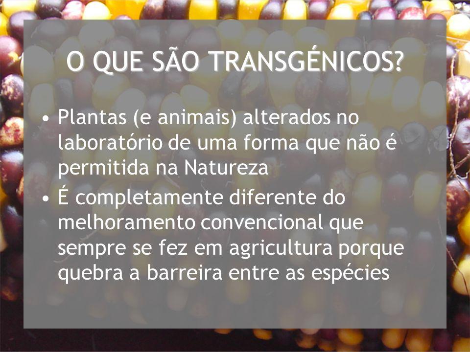 O QUE SÃO TRANSGÉNICOS Plantas (e animais) alterados no laboratório de uma forma que não é permitida na Natureza.