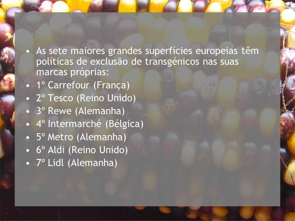 As sete maiores grandes superfícies europeias têm políticas de exclusão de transgénicos nas suas marcas próprias: