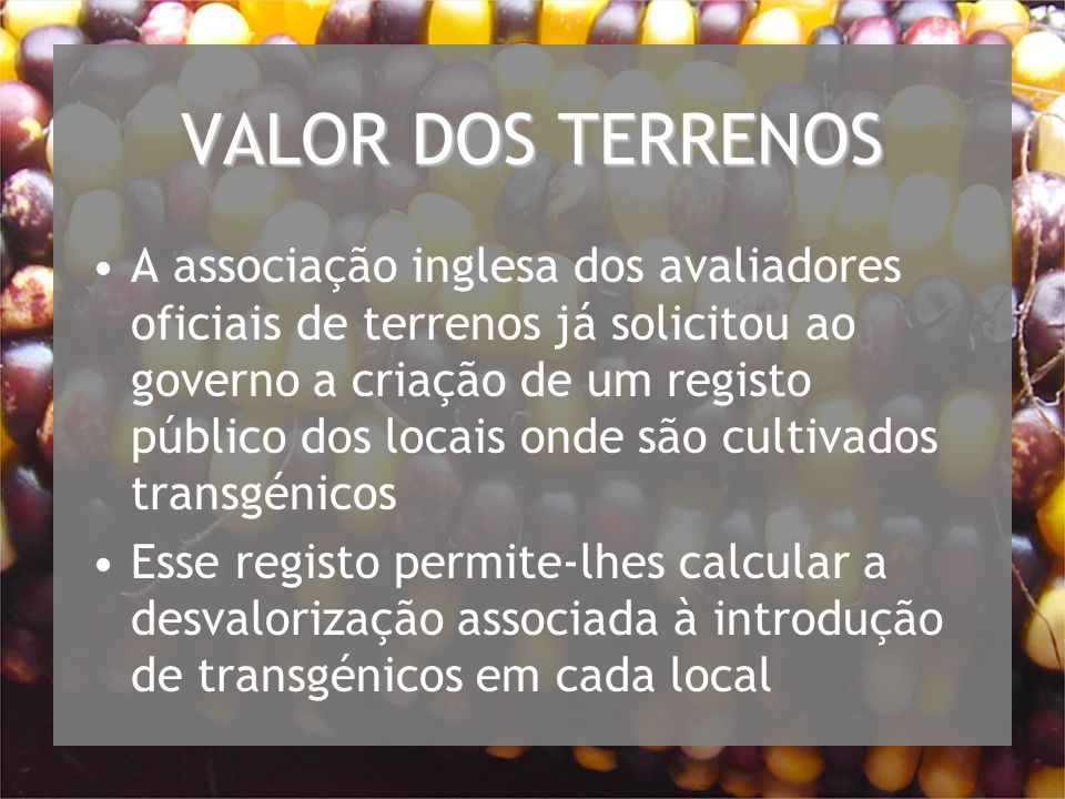 VALOR DOS TERRENOS