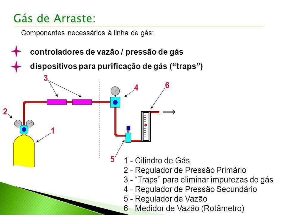 Gás de Arraste: controladores de vazão / pressão de gás
