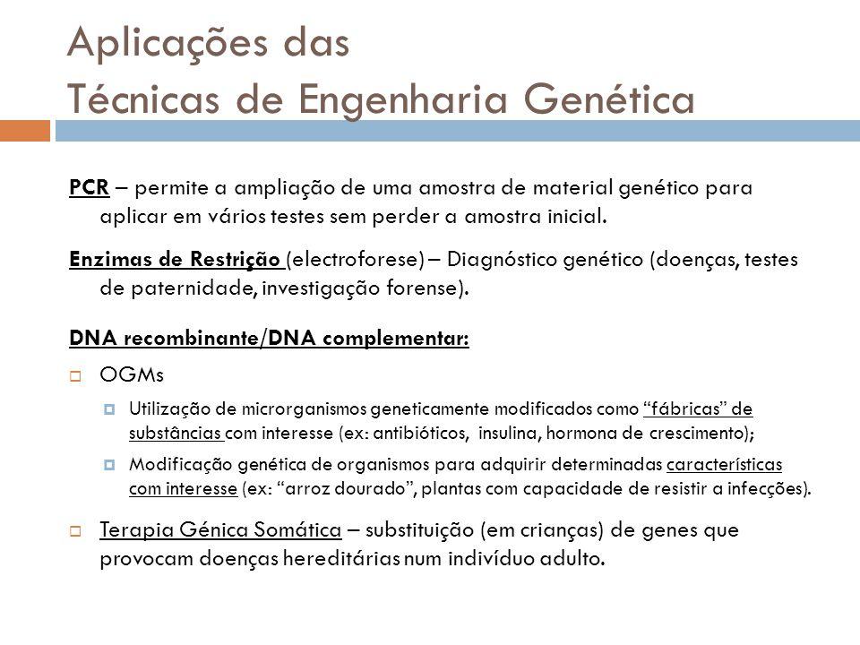 Aplicações das Técnicas de Engenharia Genética