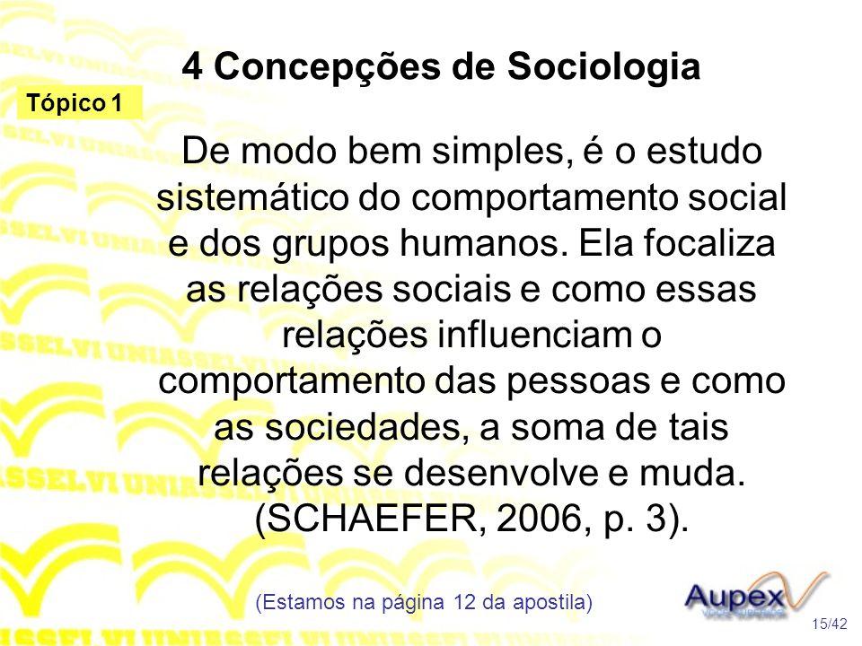4 Concepções de Sociologia