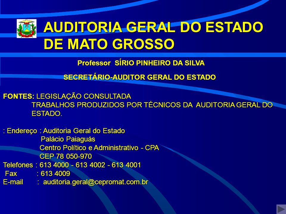 SECRETÁRIO-AUDITOR GERAL DO ESTADO