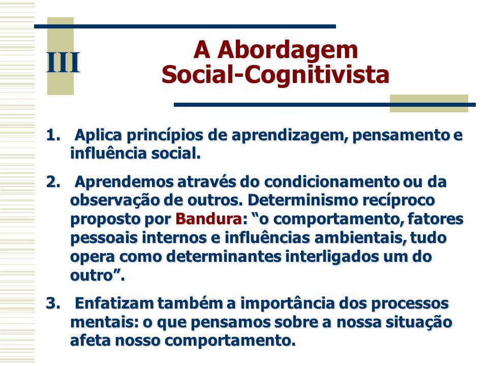 A Abordagem Social-Cognitivista