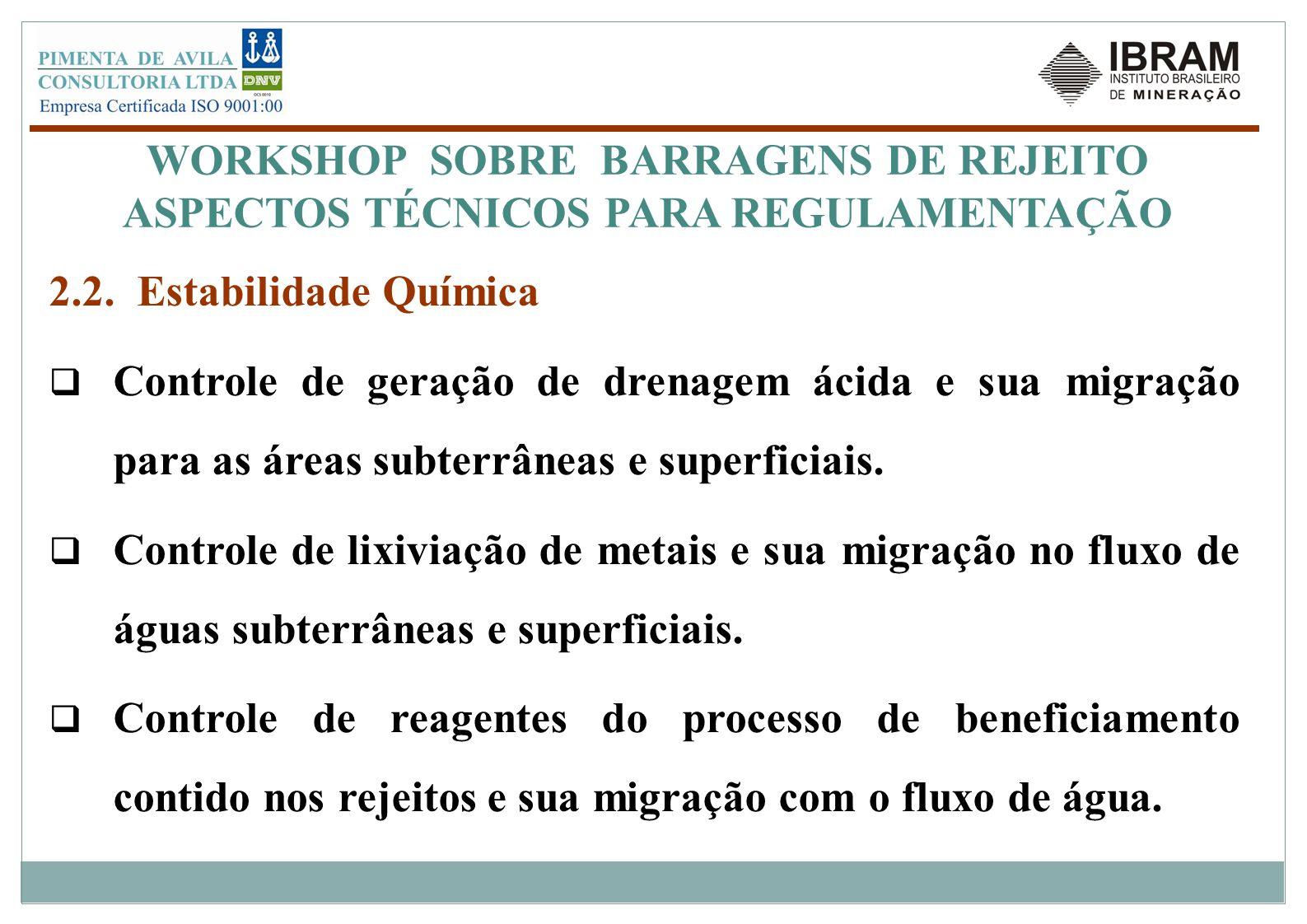WORKSHOP SOBRE BARRAGENS DE REJEITO ASPECTOS TÉCNICOS PARA REGULAMENTAÇÃO