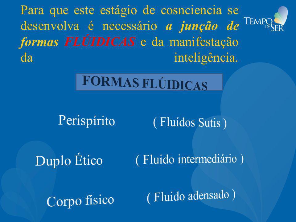 Para que este estágio de cosnciencia se desenvolva é necessário a junção de formas FLÚIDICAS e da manifestação da inteligência.