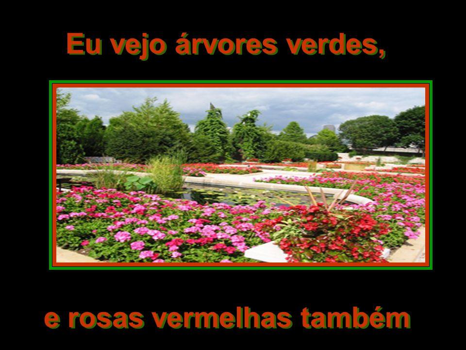e rosas vermelhas também