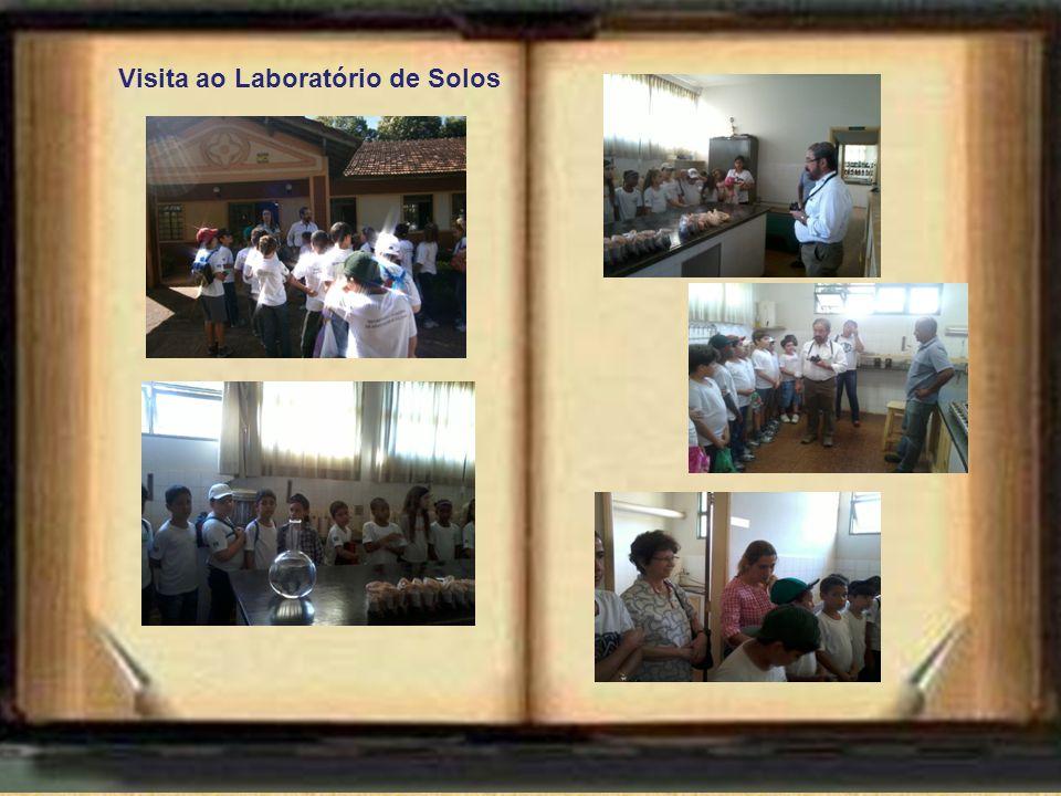 Visita ao Laboratório de Solos