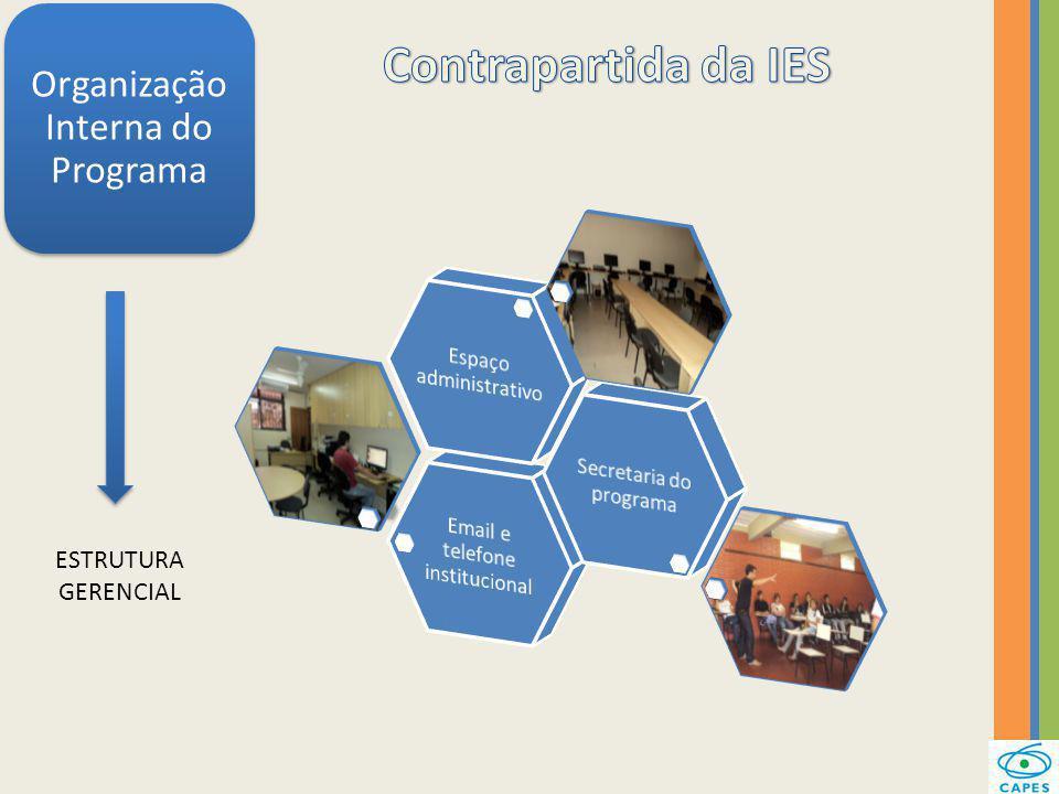 Contrapartida da IES Organização Interna do Programa