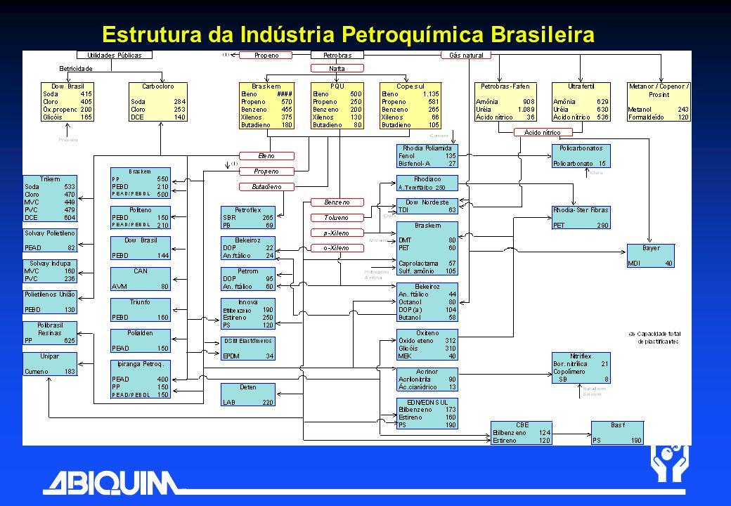 Estrutura da Indústria Petroquímica Brasileira