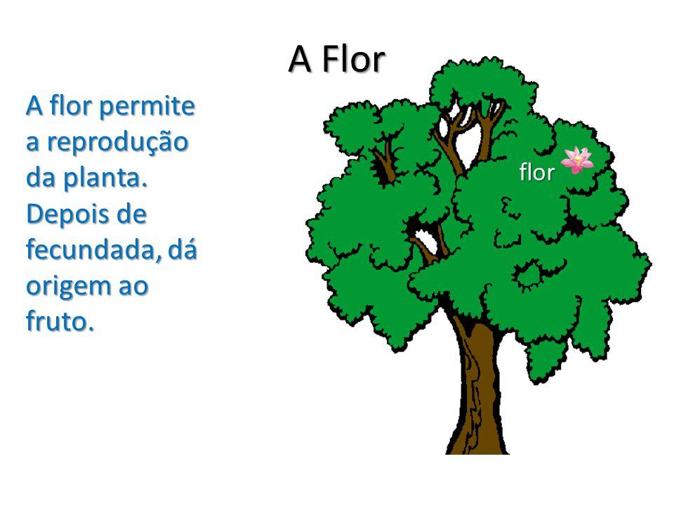 A Flor A flor permite a reprodução da planta. Depois de fecundada, dá origem ao fruto. flor