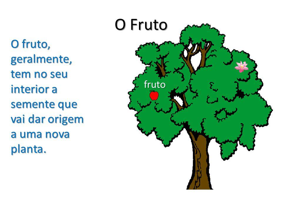 O Fruto O fruto, geralmente, tem no seu interior a semente que vai dar origem a uma nova planta.