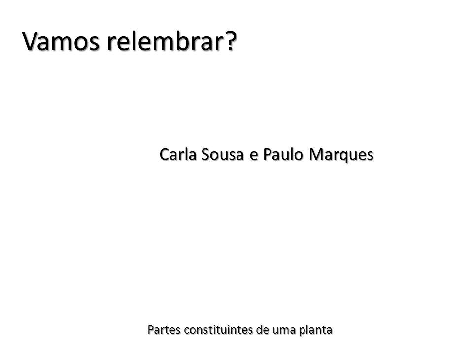 Vamos relembrar Carla Sousa e Paulo Marques
