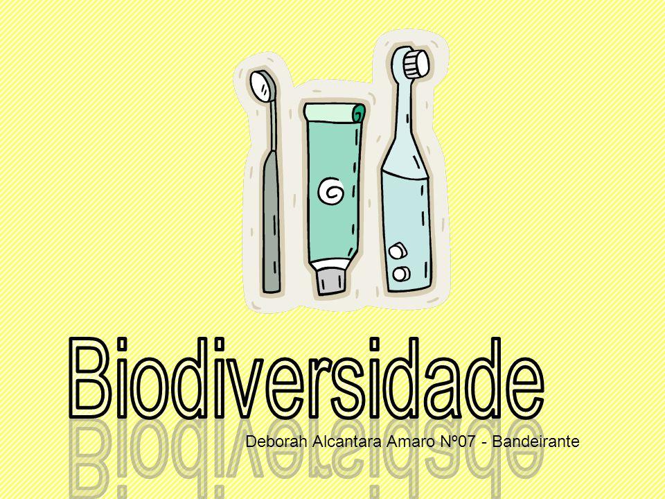 Biodiversidade Deborah Alcantara Amaro Nº07 - Bandeirante