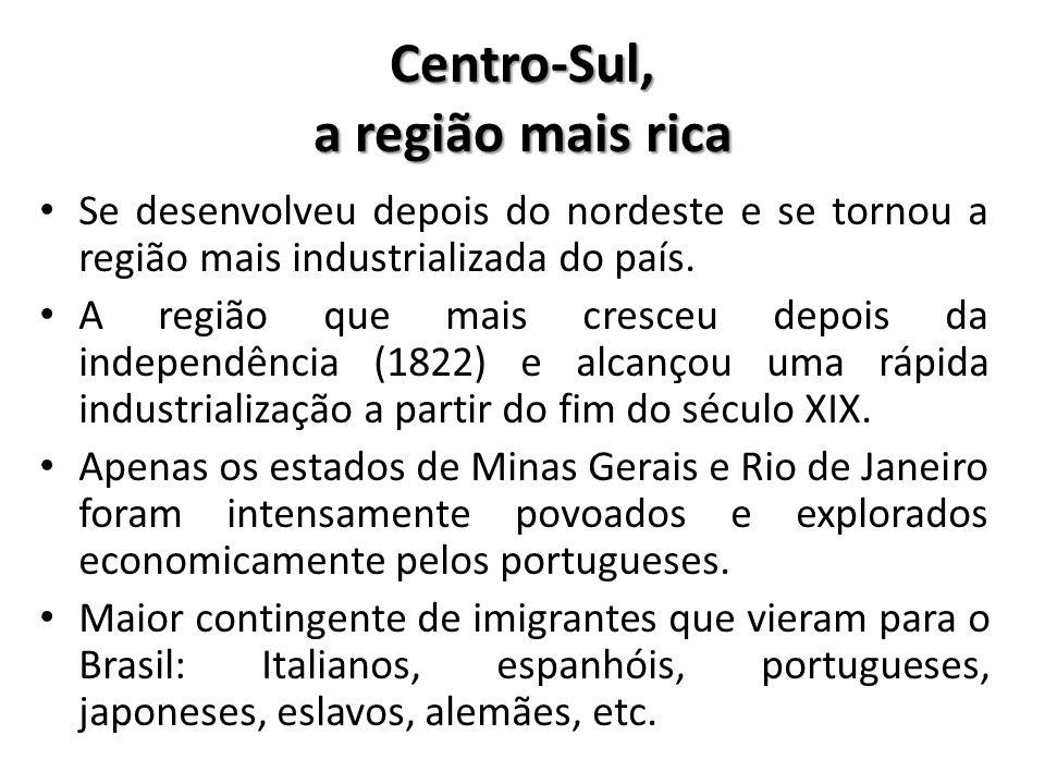 Centro-Sul, a região mais rica