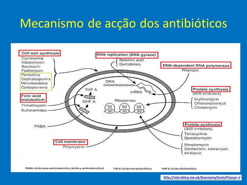 Mecanismo de acção dos antibióticos