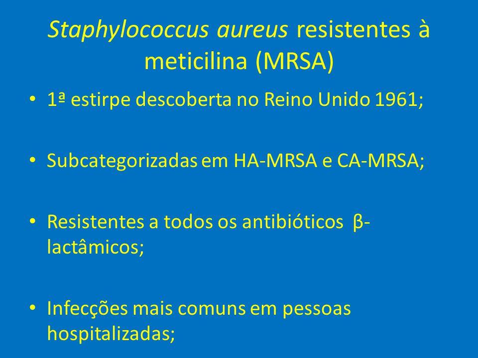 Staphylococcus aureus resistentes à meticilina (MRSA)