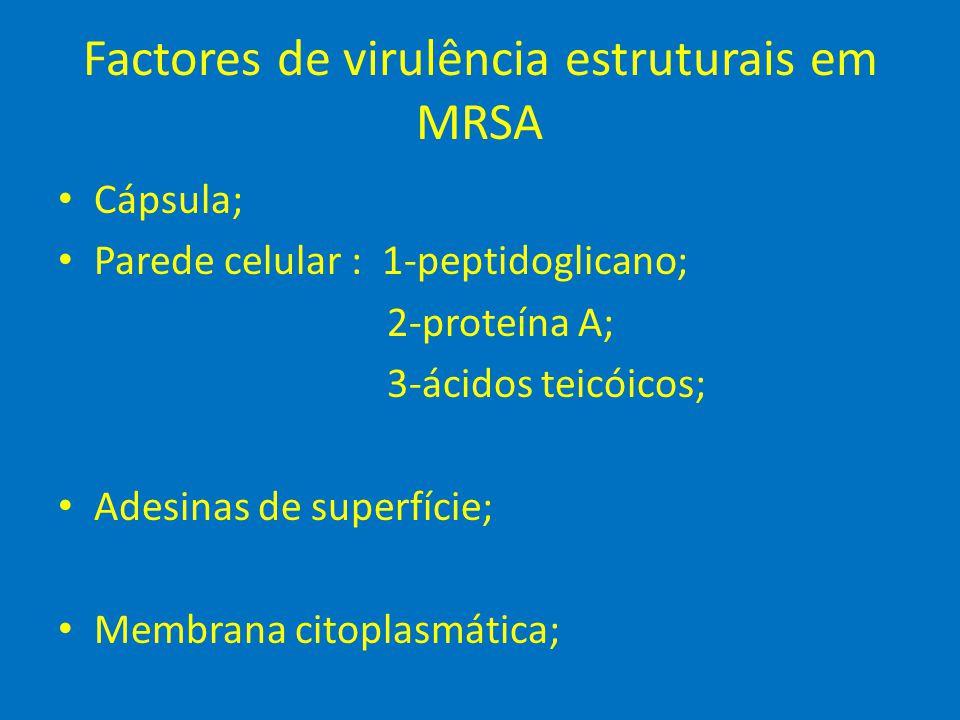 Factores de virulência estruturais em MRSA