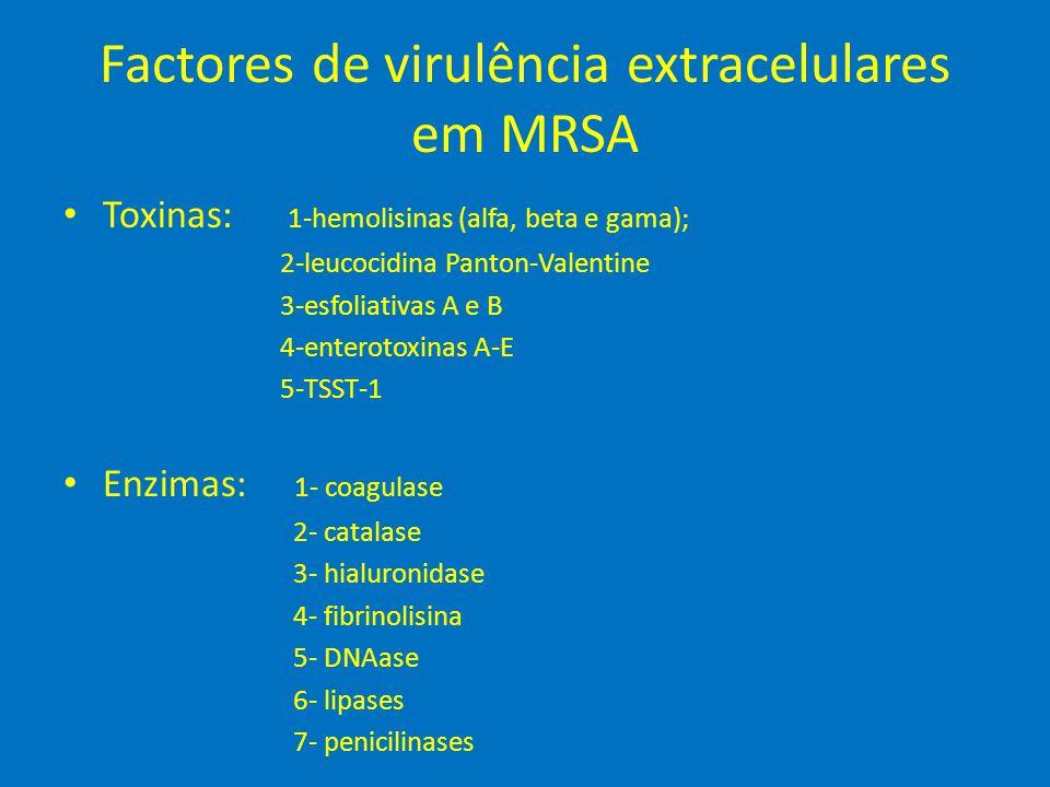 Factores de virulência extracelulares em MRSA