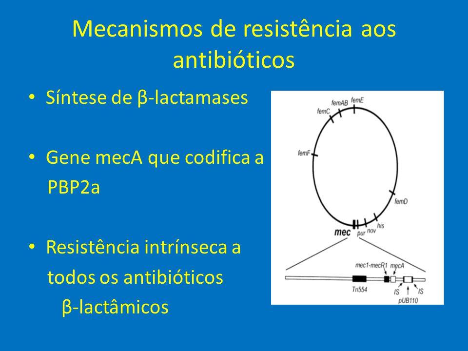 Mecanismos de resistência aos antibióticos