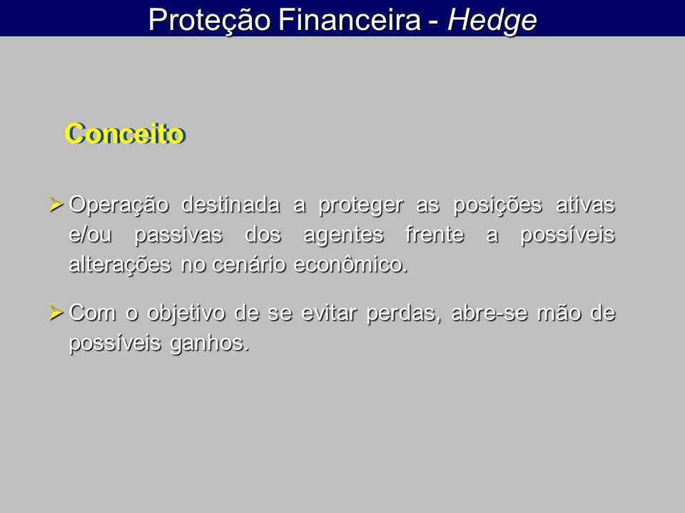 Proteção Financeira - Hedge