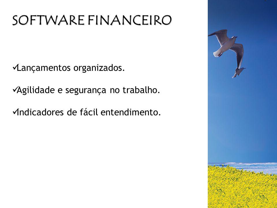 SOFTWARE FINANCEIRO Lançamentos organizados.